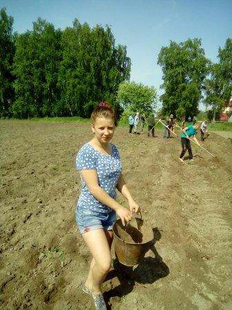 «Есть у нас огород, в нем картошка растет»